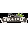Base Végétale